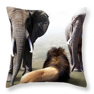 No Fear Throw Pillow by Bill Stephens