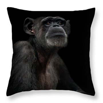 Noble Throw Pillow by Paul Neville