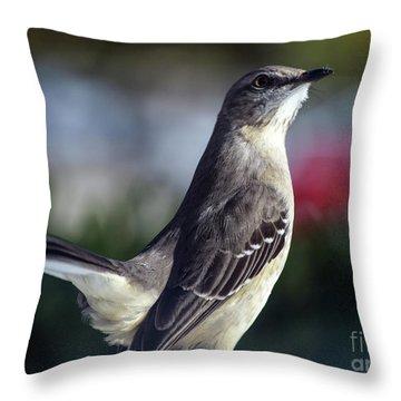Northern Mockingbird Up Close Throw Pillow by William Tasker