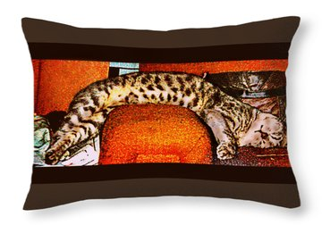 Nothin Like A Good Nap... Throw Pillow by Camille Reichardt