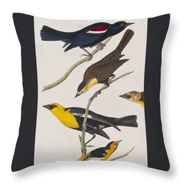 Nuttall's Starling Yellow-headed Troopial Bullock's Oriole Throw Pillow by John James Audubon
