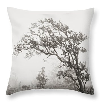 Ohia Lehua Tree Throw Pillow by Greg Vaughn - Printscapes