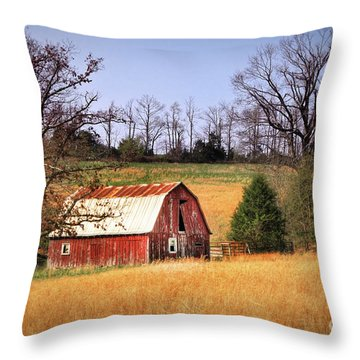 Old Barn Throw Pillow by Tamyra Ayles