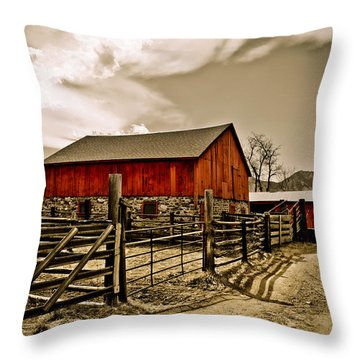 Old Country Farm Throw Pillow by Marilyn Hunt