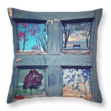 Old Doorways Throw Pillow by Tara Turner