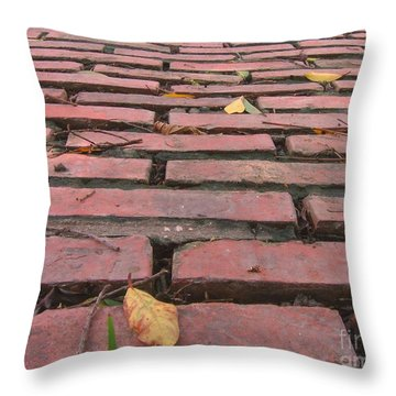Old Red Brick Road Throw Pillow by Yali Shi