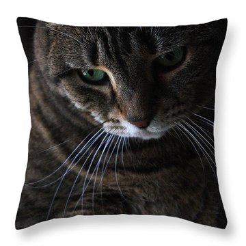Ole Green Eyes Throw Pillow by Joe Kozlowski