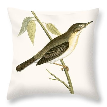 Olivaceous Warbler Throw Pillow by English School