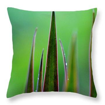 On Guard Throw Pillow by Melanie Moraga