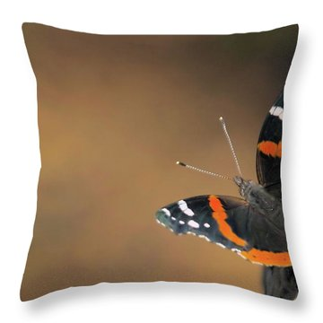 On The Rocks Throw Pillow by Karol Livote