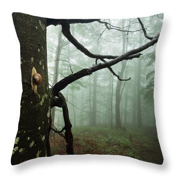 One Day Of The Snail's Life Throw Pillow by Evgeni Dinev