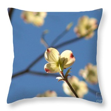 One Dogwood Blooms Throw Pillow by Laura Brightwood