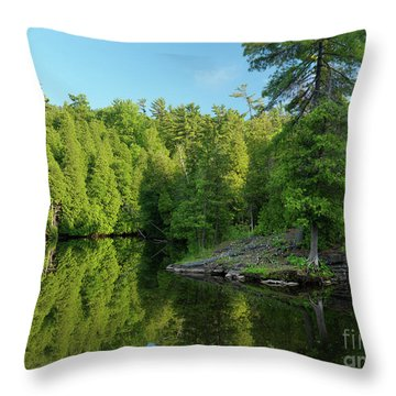 Ontario Nature Scenery Throw Pillow by Oleksiy Maksymenko