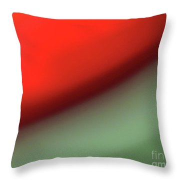 Orange Red Green Throw Pillow by CML Brown