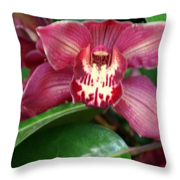 Orchid 10 Throw Pillow by Marty Koch