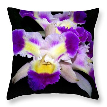 Orchid 13 Throw Pillow by Marty Koch