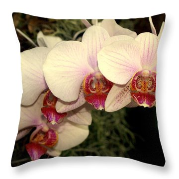Orchid 19 Throw Pillow by Marty Koch