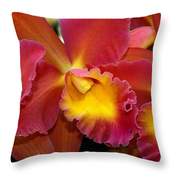 Orchid 8 Throw Pillow by Marty Koch