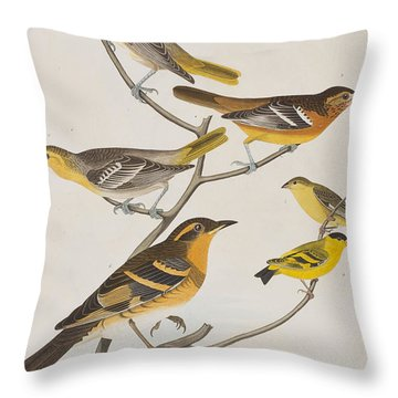 Orioles Thrushes And Goldfinches Throw Pillow by John James Audubon