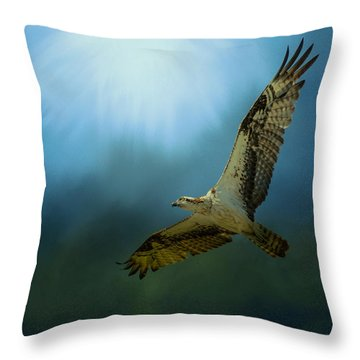Osprey In The Evening Light Throw Pillow by Jai Johnson