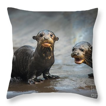 Otter Pup Pair Throw Pillow by Jamie Pham