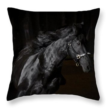 Out Of The Darkness D4367 Throw Pillow by Wes and Dotty Weber