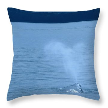 Out The Blow Hole  Throw Pillow by Jeff Swan