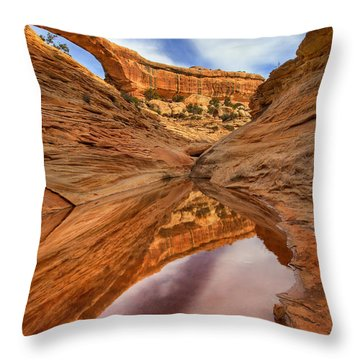Owachomo Reflected Throw Pillow by Mike  Dawson