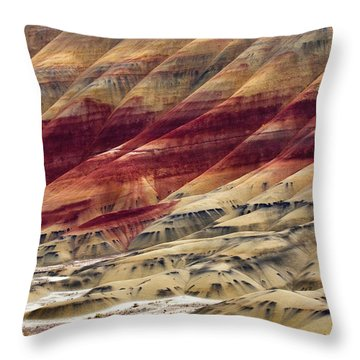 Painted Hills Contour Throw Pillow by Mike  Dawson