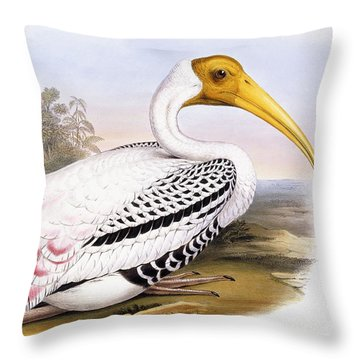 Painted Stork Throw Pillow by John Gould