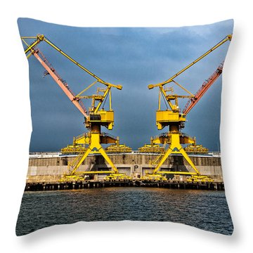Pair Of Cranes Throw Pillow by Christopher Holmes