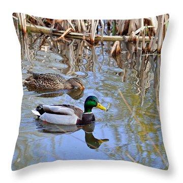 Pair Of Mallard Ducks Throw Pillow by Rod Johnson