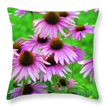Pale Purple Coneflowers Throw Pillow by Marty Koch