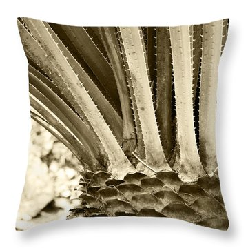 Palm Abstraction Throw Pillow by Ben and Raisa Gertsberg