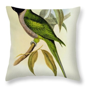 Parakeet Throw Pillow by John Gould