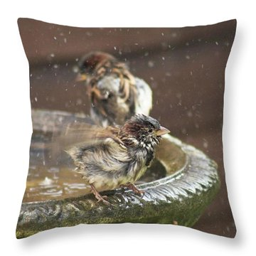 Pass The Towel Please: A House Sparrow Throw Pillow by John Edwards