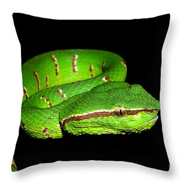 Patient Modell Throw Pillow by Joerg Lingnau