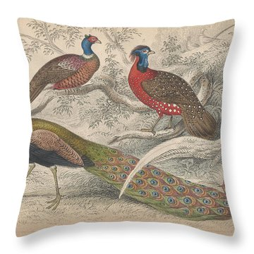 Peacocks Throw Pillow by Oliver Goldsmith