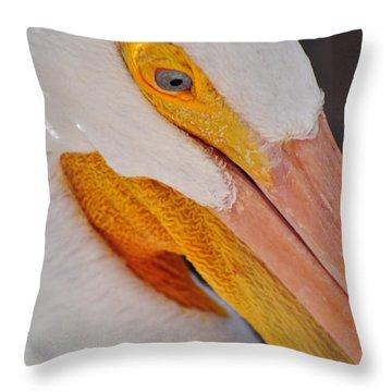 Pelican Twist Throw Pillow by Marty Koch