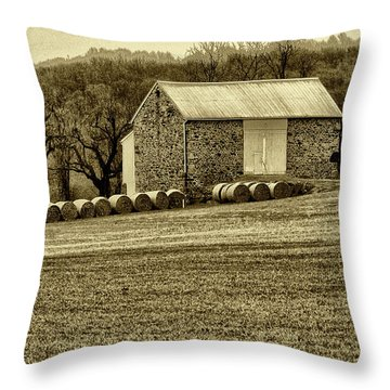 Pennsylvania Barn Throw Pillow by Bill Cannon