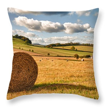 Perfect Harvest Landscape Throw Pillow by Amanda Elwell