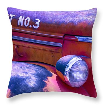 Permit No 3 Throw Pillow by Garry Gay