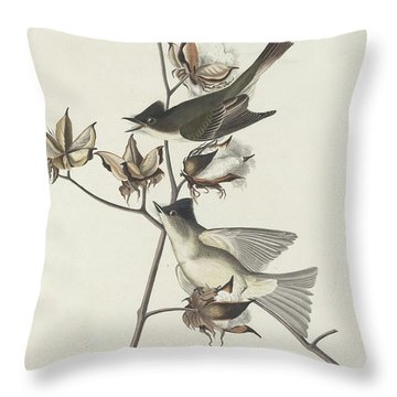 Pewit Flycatcher Throw Pillow by John James Audubon