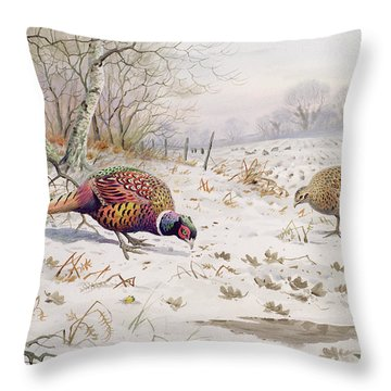 Pheasant And Partridge Eating  Throw Pillow by Carl Donner