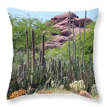 Phoenix Botanical Garden Throw Pillow by Carol Groenen