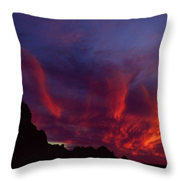 Phoenix Risen Throw Pillow by Randy Oberg