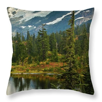 Picture Lake Vista Throw Pillow by Mike Reid