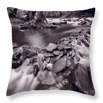 Pigeon Forge River Great Smoky Mountains Bw Throw Pillow by Steve Gadomski