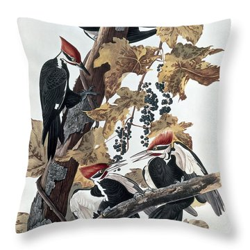 Pileated Woodpeckers Throw Pillow by John James Audubon
