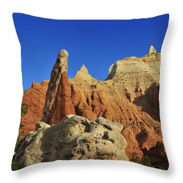 Pilgrim Throw Pillow by Skip Hunt